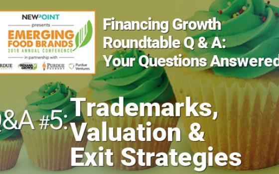 Emerging-Brands-Conf-Workshp-Finance-5